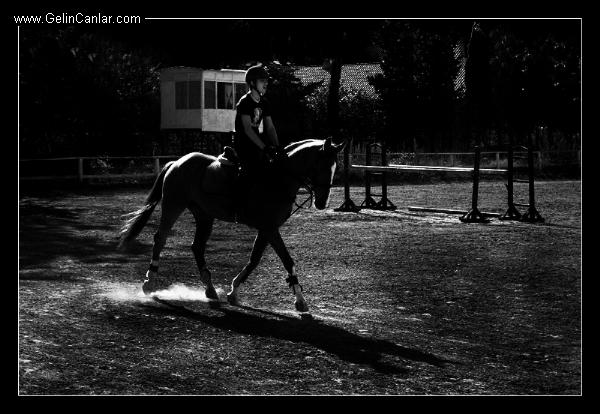 ali-ekber-fotograf-galerisi-2352